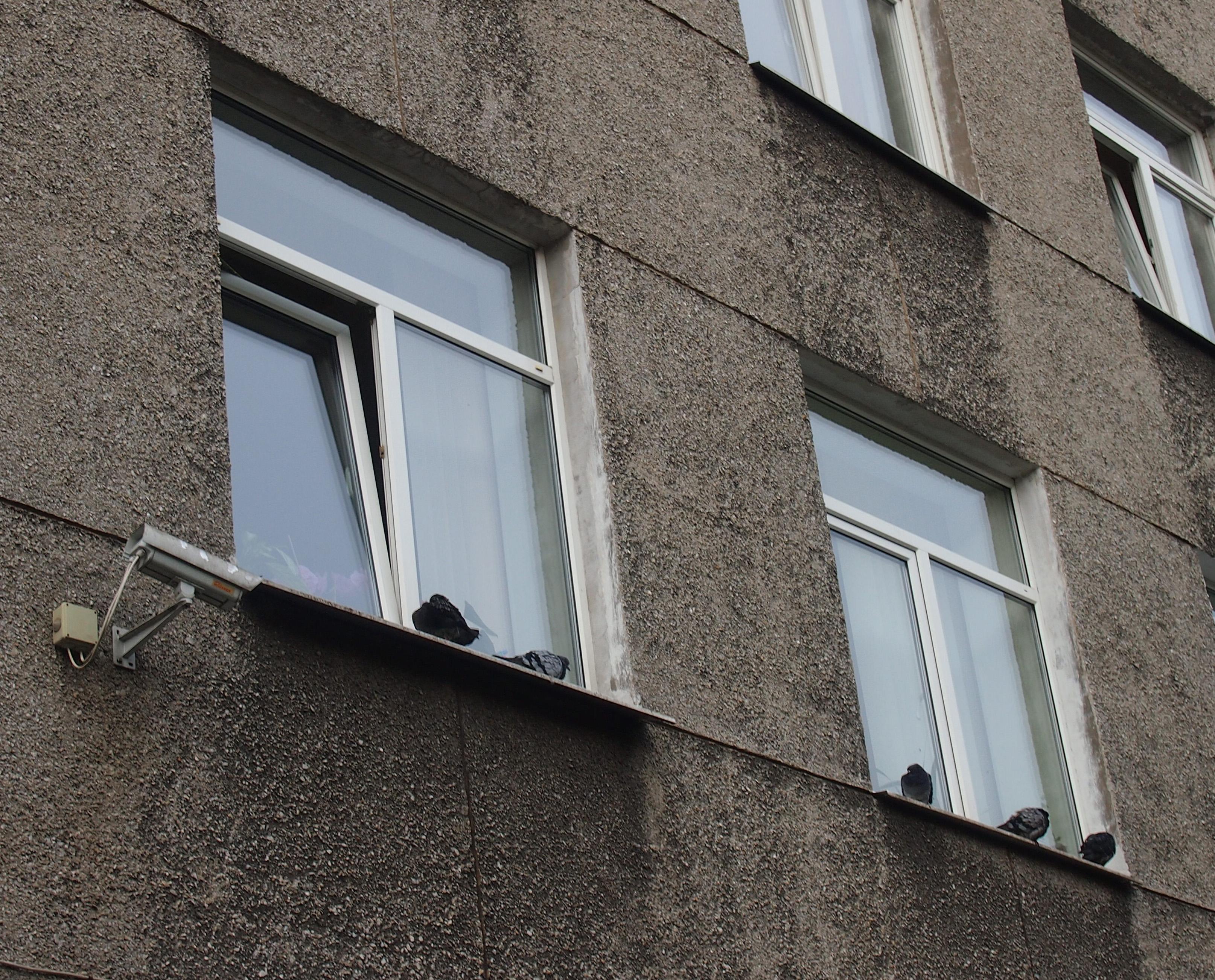 Бюджет Карелии становится для чиновников кормушкой? Фото: Валерий Поташов