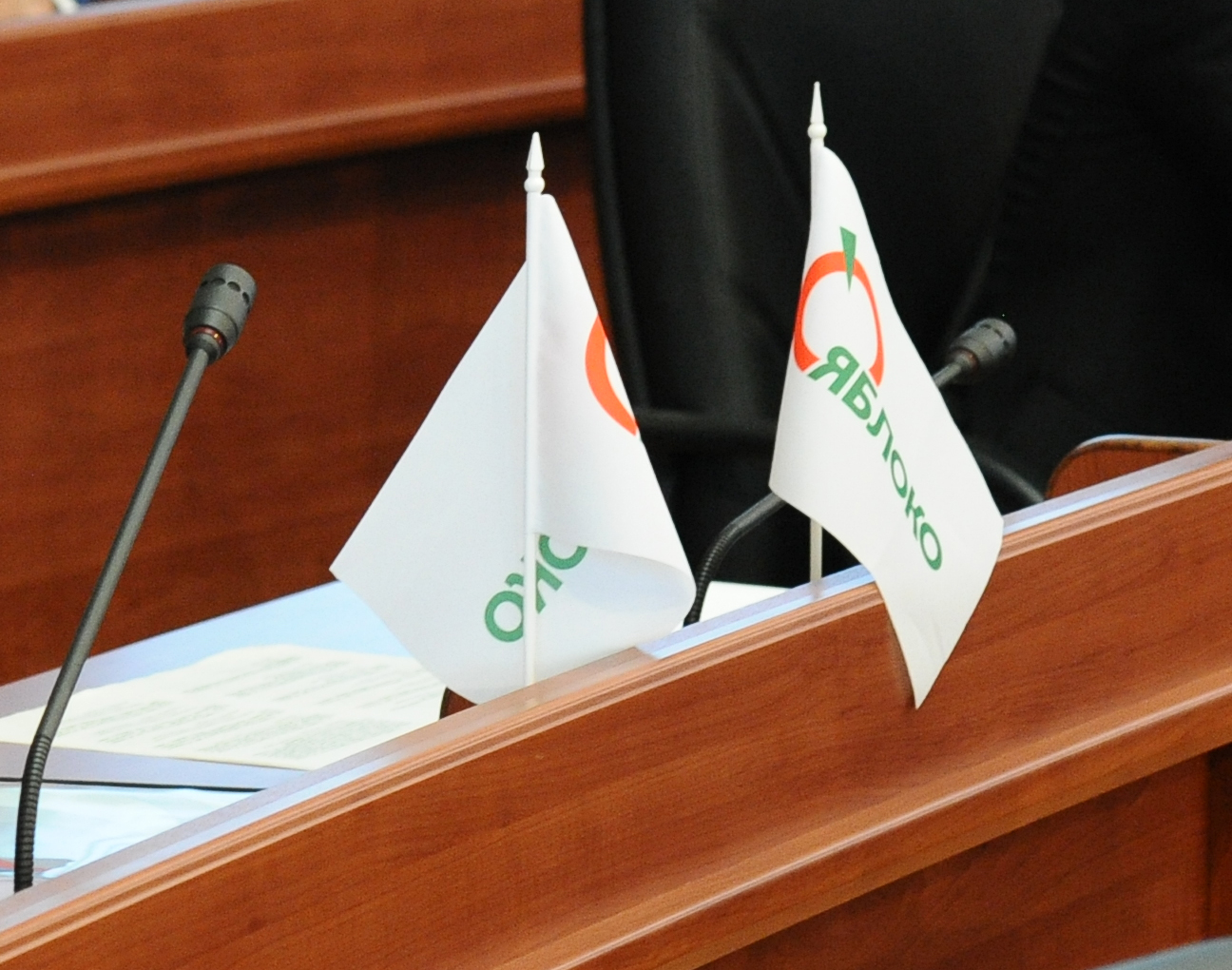 """Удастся ли карельскому """"Яблоку"""" объединить демократические силы региона? Фото: gubdaily.ru"""