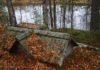 Старое карельское кладбище. Фото: Валерий Поташов