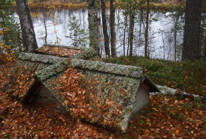 Карелия остается вымирающим регионом. Фото: Валерий Поташов