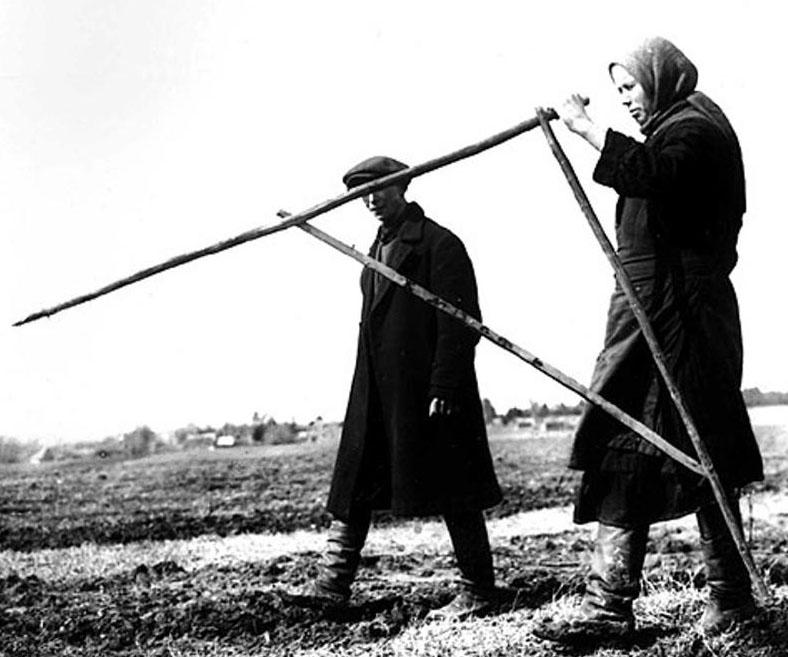 В конце прошлого года власти Карелии устроили в республике передел земельных полномочий. Архивное фото
