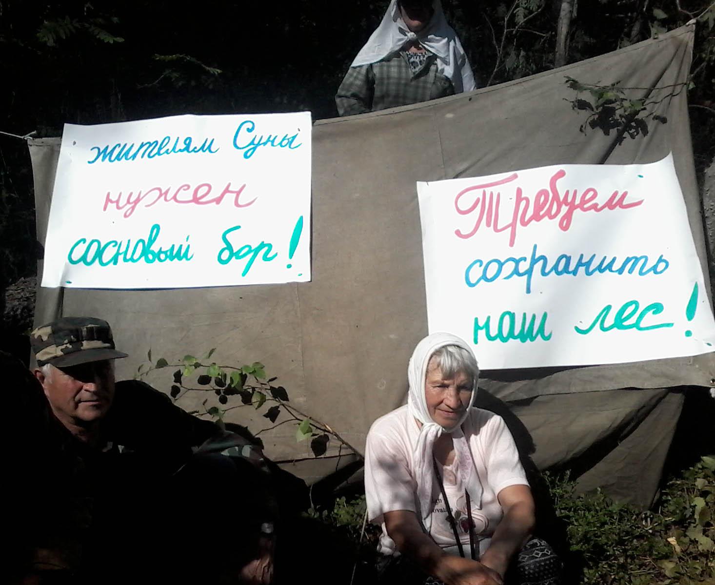 Защитники Сунского бора. Фото: Татьяна Ромахина