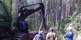 Противостояние защитников Сунского бора и разработчиков карьера - один из самых серьезных социальных конфликтов в Карелии. Фото: Валерий Поташов