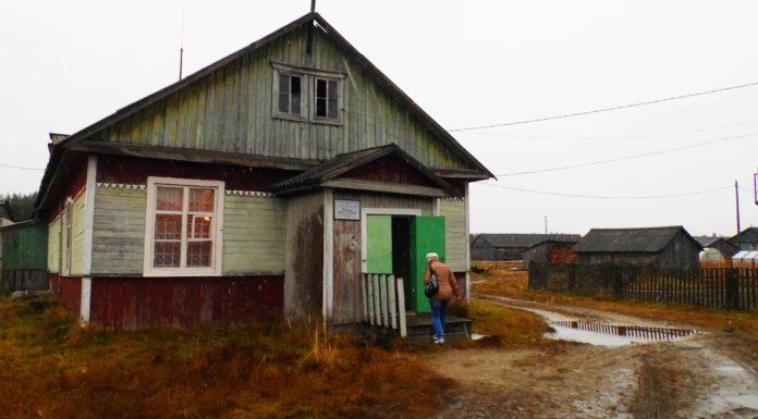 В лесном карельском поселке Валдай. Фото: Алексей Владимиров