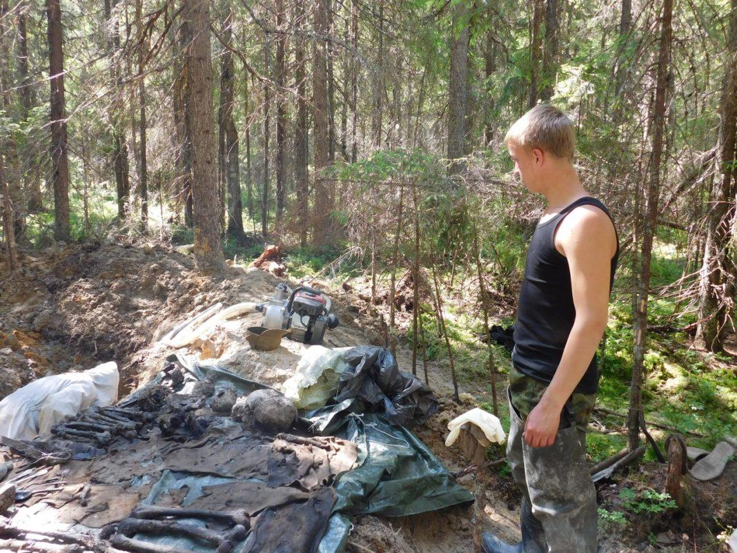 В Олонецком районе Карелии обнаружены останки солдат Великой Отечественной войны. Фото: Дарья Ряппиева
