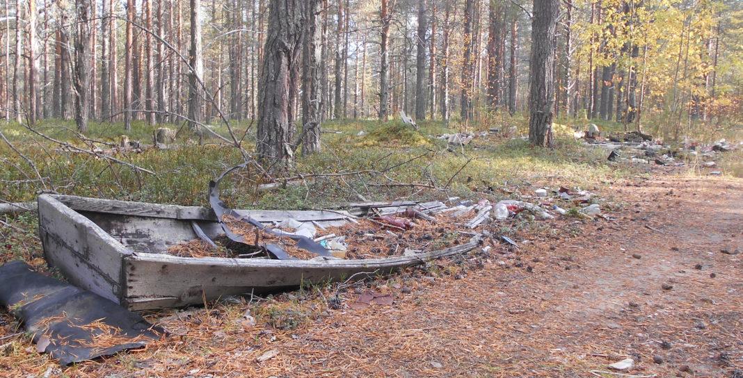 Карельские леса зарастают мусором. Фото: Людмила Капанен