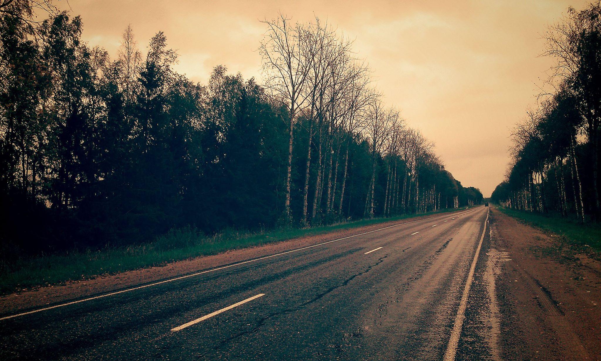 Обычная дорога в Псковской области. Фото: Валерий Поташов
