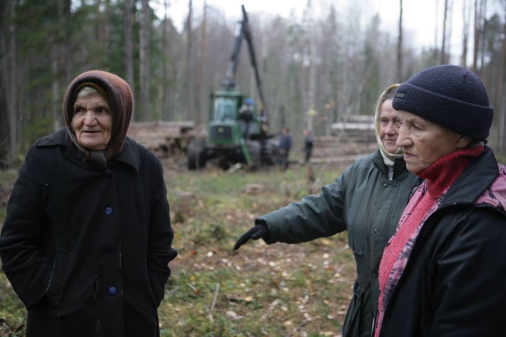 Защитники Сунского бора. Фото: Игорь Подгорный