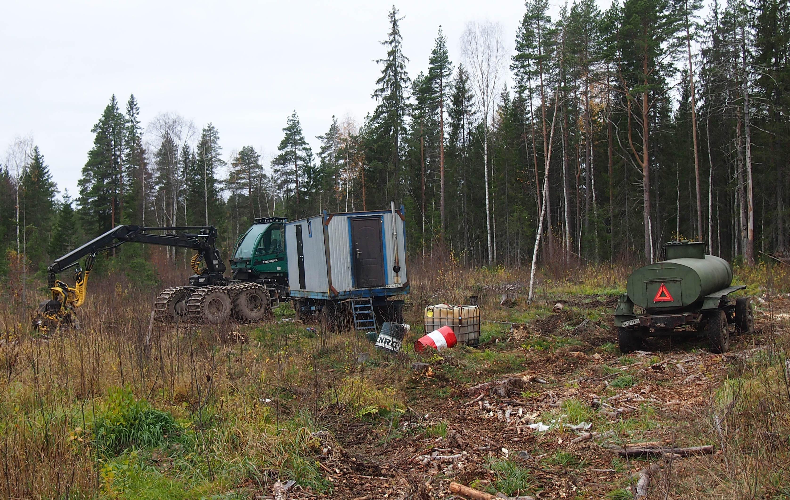 Лесозаготовители, начавшие вырубку Сунского бора, были вынуждены отвести технику в свой лагерь. Фото: Валерий Поташов