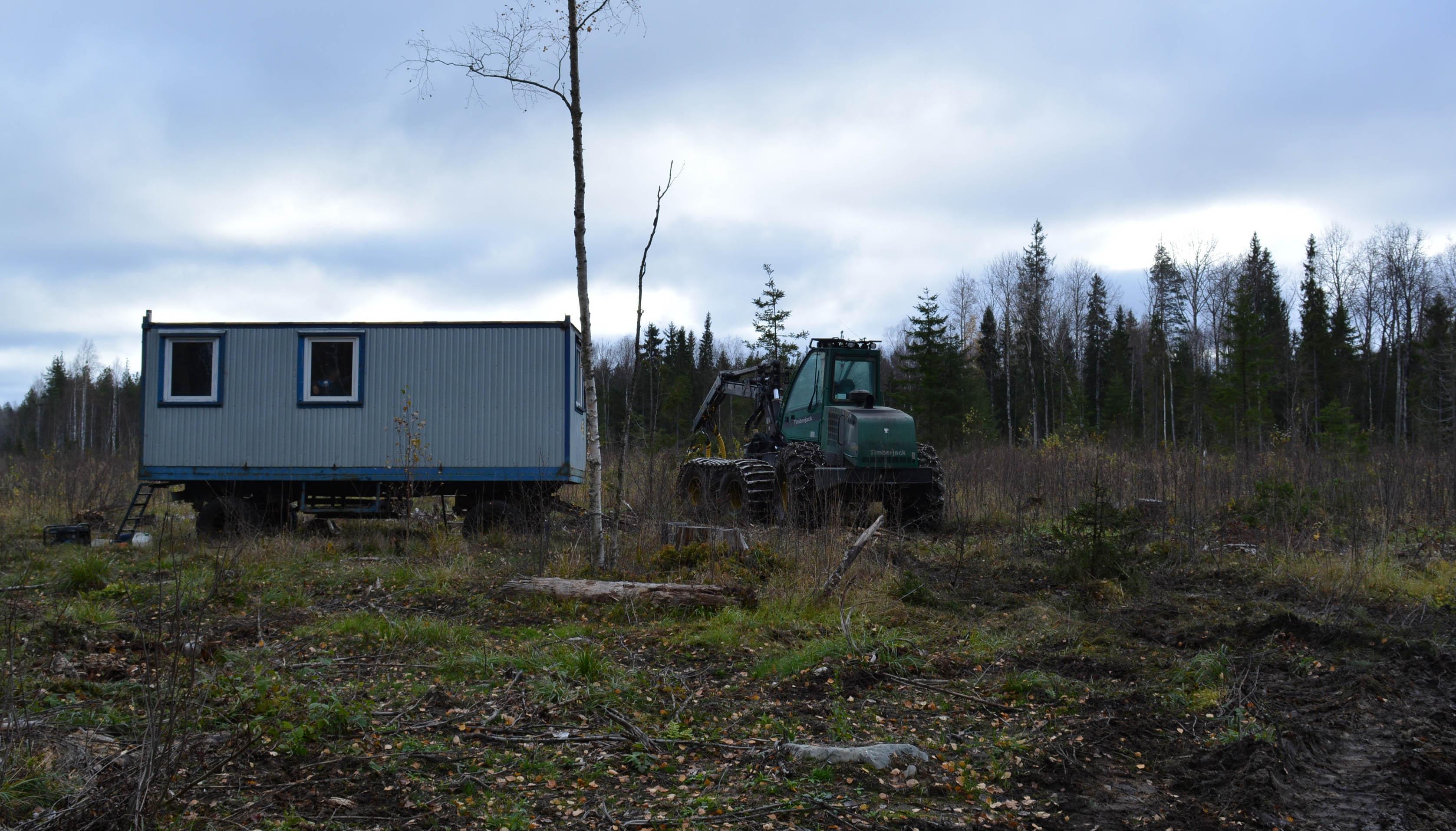 Лагерь лесозаготовителей. Фото: Алексей Владимиров