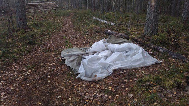 Сорванная палатка защитников Сунского бора. Фото: Алексей Владимиров