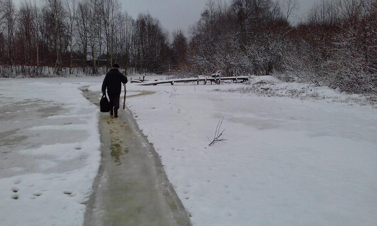 Пенсионеры из карельской деревни Суна идут на защиту леса даже по неокрепшему льду. Фото: Вера Мушникова