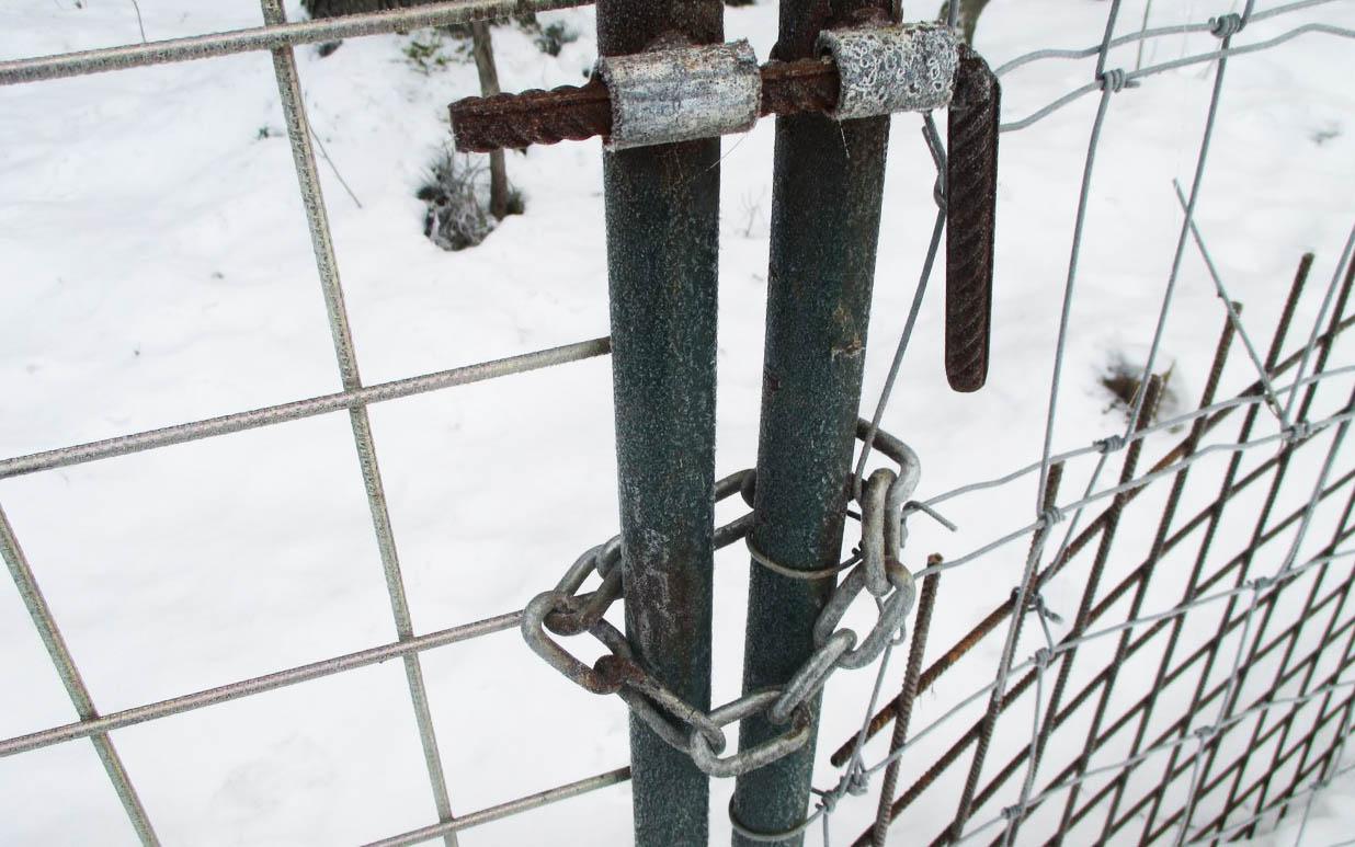 Свободный доступ в лес жителям Карелии закрыт. Фото: openbereg.ru