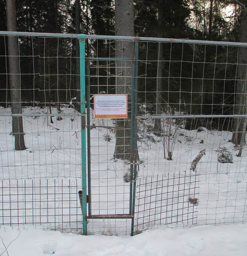 Этот забор ограждает территорию элитного охотхозяйства
