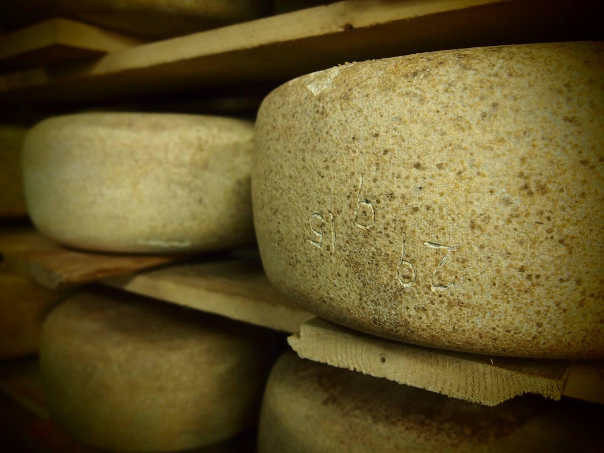 Европейский сыр подрывает российский патриотизм? Фото: Валерий Поташов