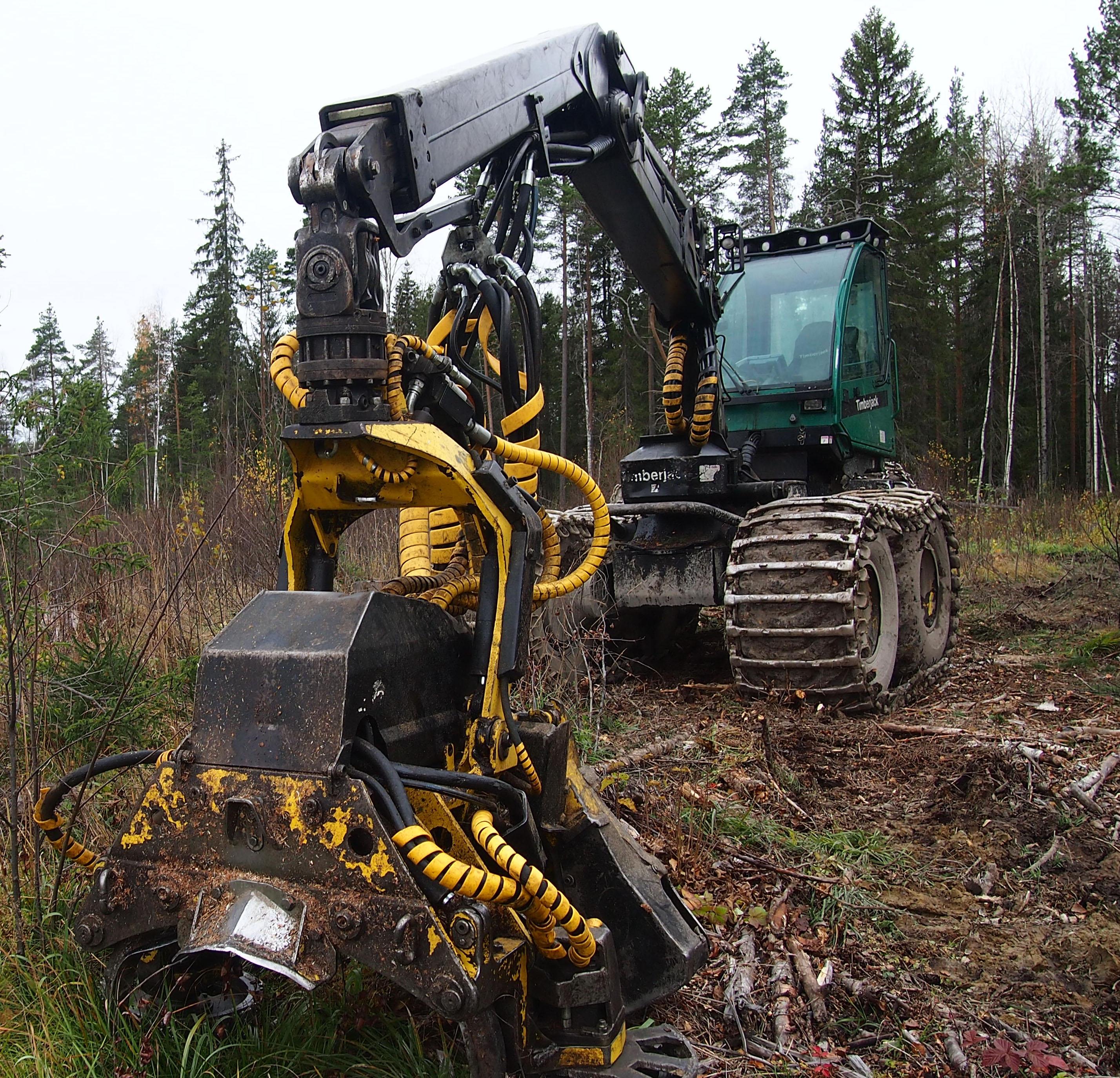 Объемы лесозаготовки в Карелии ежегодно растут. Фото: Валерий Поташов