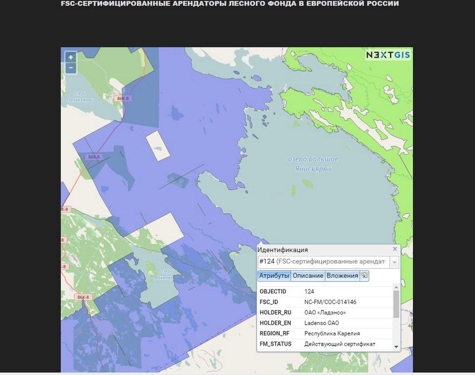 Конфликт разгорелся на сертифицированной лесной территории. Фото: Лесной форум Гринпис России