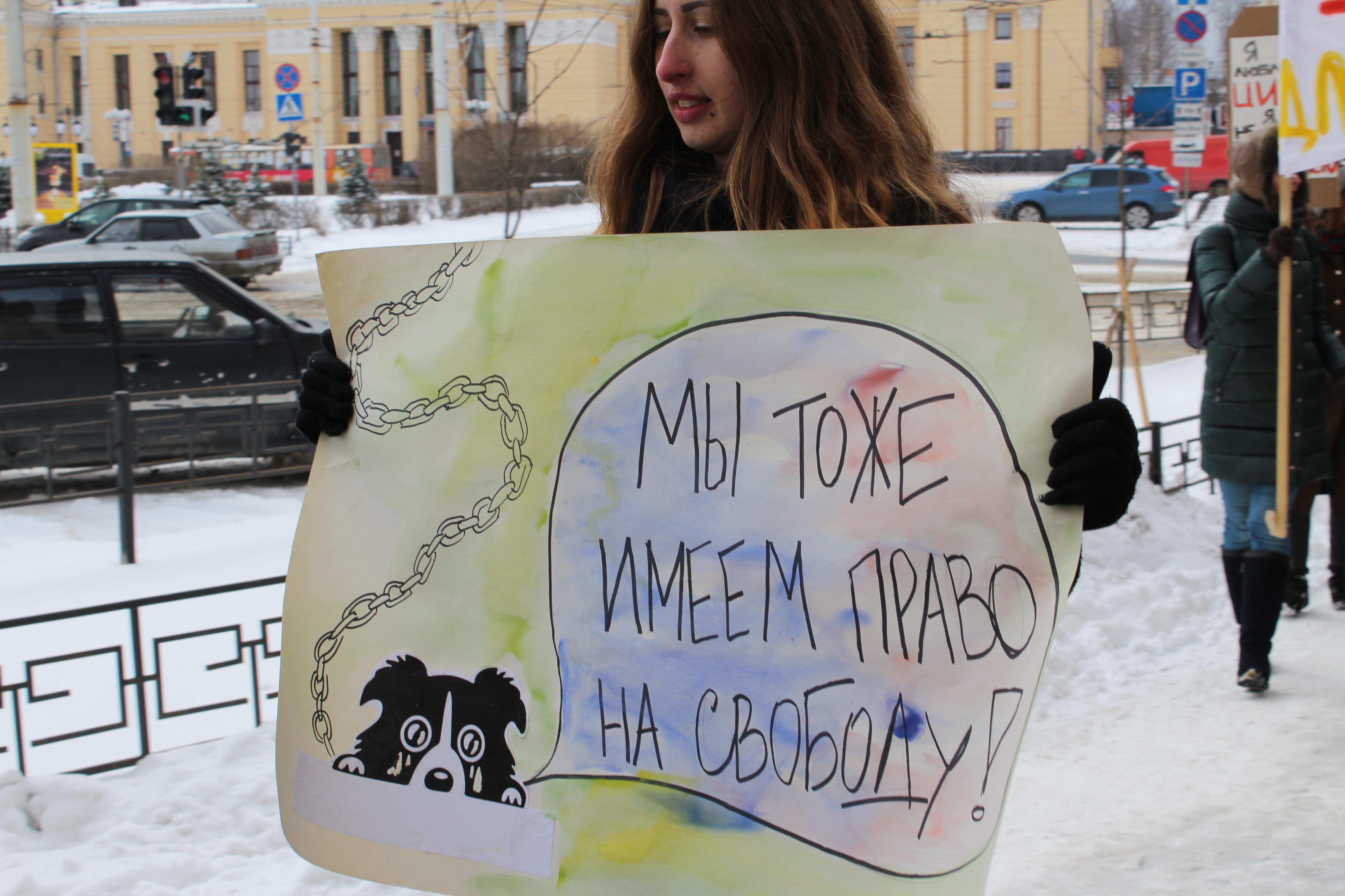Демонстрация зоозащитников. Фото: Валерий Поташов