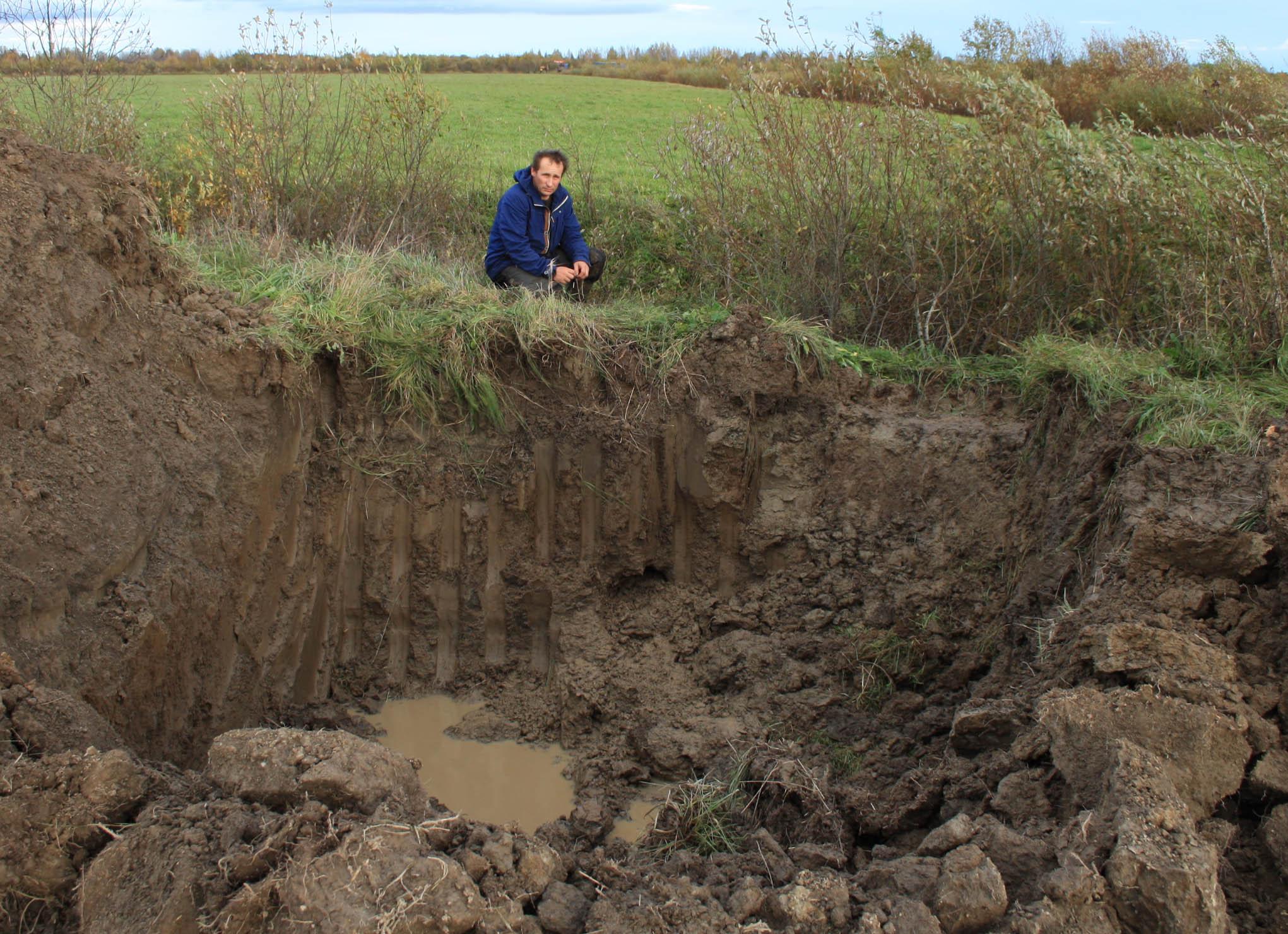 Вот такую картину обнаружил Александр Санжаровский на своей земле. Фото: Черника