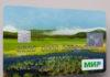 """Карельских бюджетников переведут на карты """"Мир"""". Фото: mironline.ru"""
