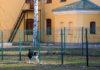Объект культурного наследия, переданный РПЦ, охраняет грозный пес. Фото: Дмитрий Беленихин