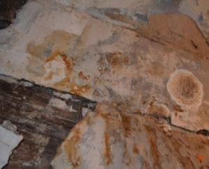 """Стены дома поражены гнилью. Фото из материалов обследования здания проектно-конструкторским бюро """"Промбезопасность"""""""