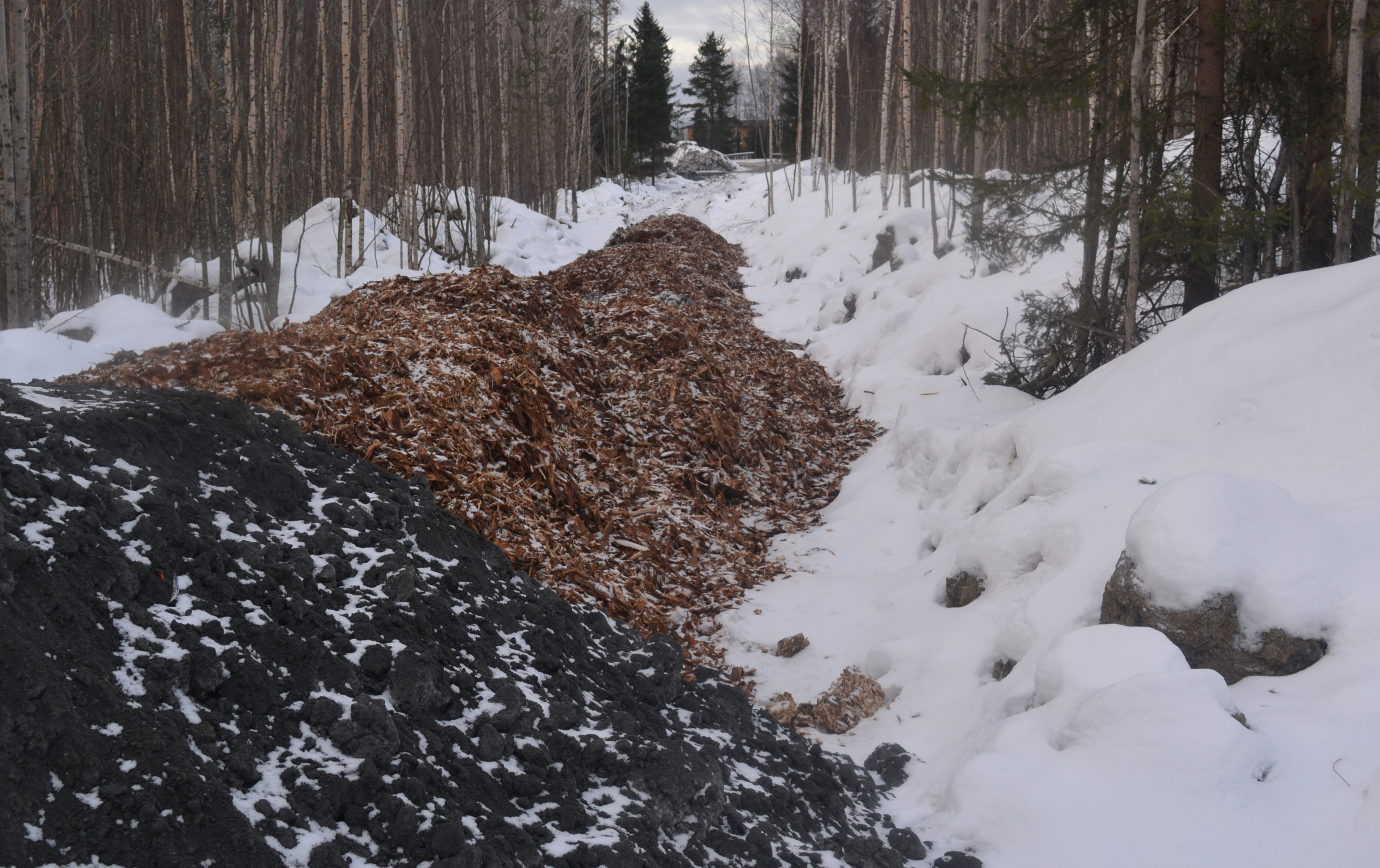 Кора требует специальной утилизации. Фото: Алексей Владимиров
