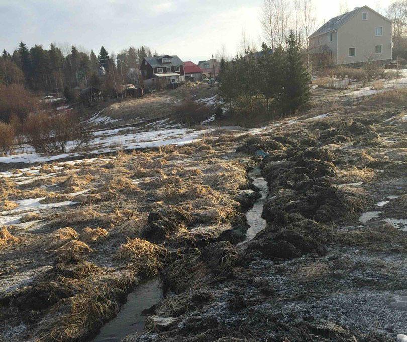"""Так выглядит """"система водоотведения"""" в поселке Южный. Фото местных жителей"""