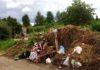 Такую картину вынуждены наблюдать возле могил своих близких посетители петрозаводского кладбища в Сулажгоре. Фото: Татьяна Смирнова