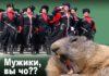 Фотоколлаж: Андрей Чеплаков