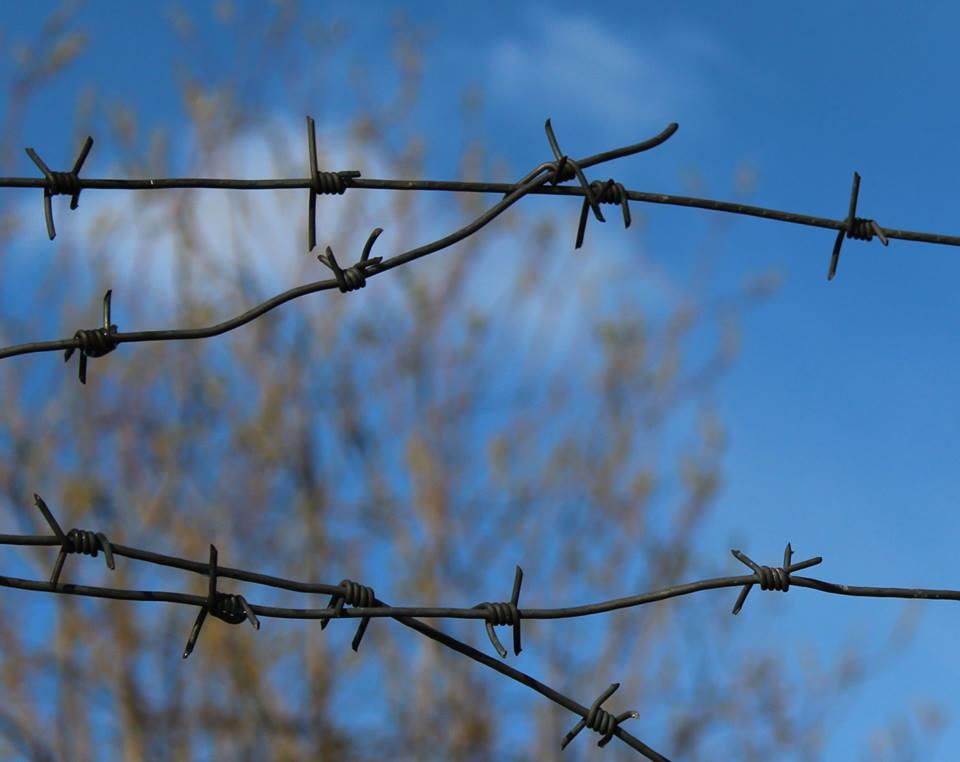 Мечта о свободе так и осталась мечтой. Фото: Валерий Поташов