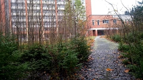 Петрозаводский госпиталь для ветеранов. Фото: Татьяна Смирнова