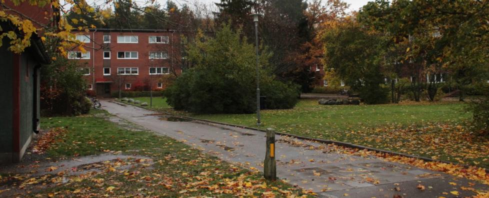 В таких районах живут не только иммигранты, но и малообеспеченные коренные шведы. Фото: Валерий Поташов