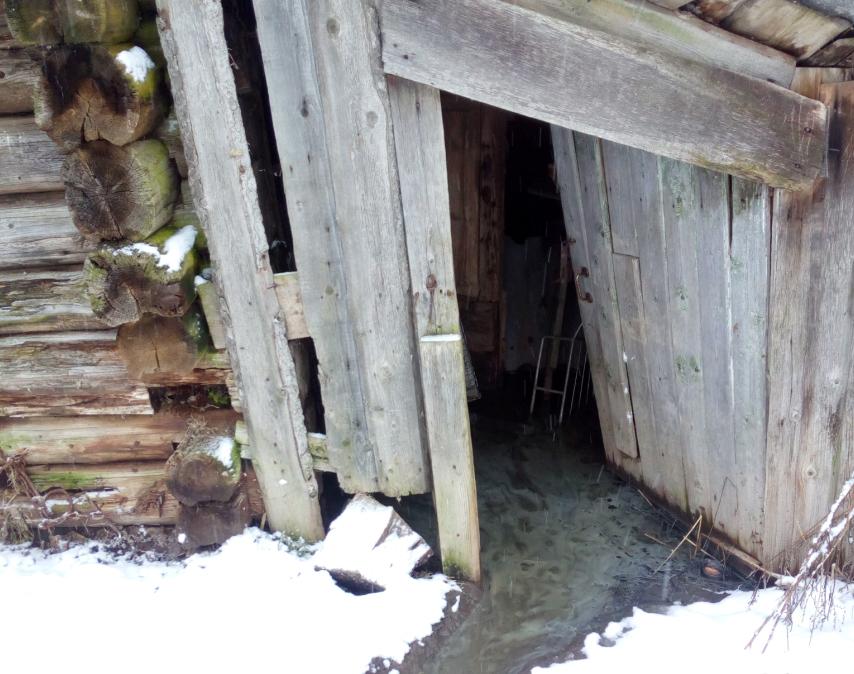 Канализационные стоки подтопили дома и хозяйственные постройки. Фото: Ольга Протасова