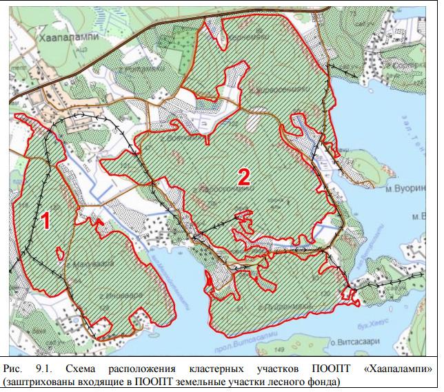 В новый заказник предполагается включить только земли лесного фонда. Фото из материалов эколого-экономического обоснования новой ООПТ