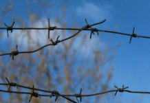 Удастся ли землякам вернуть жителя карельского поселка на свободу? Фото: Валерий Поташов