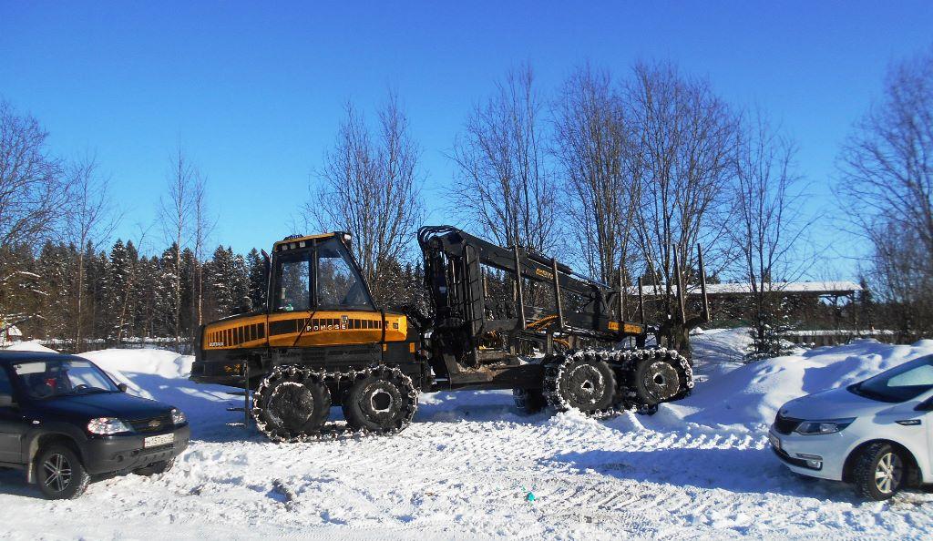 Незаконной лесозаготовкой в Петрозаводске занимались в промышленных масштабах. Фото городской администрации