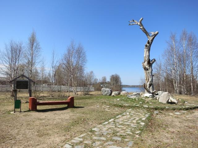 """""""Сосна Леннрота"""" в карельском поселке Калевала. Фото: monuments.karelia.ru"""