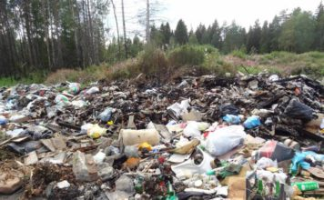 Карелия зарастает мусором. Фото с сайта ОНФ