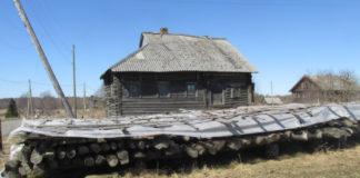 В таком виде находятся сейчас бревна Варваринской церкви из Заонежья. Фото: Ольга Осипова